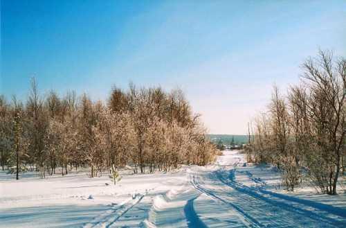 как мы за зимой в поход в январе ходили или кандалакшские тундры